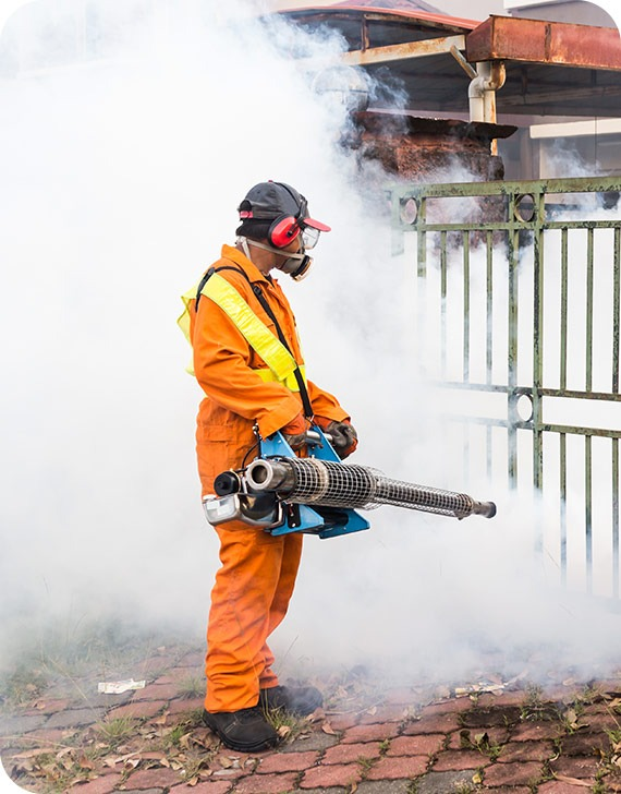 Concrobium Fogging | MoldPro | Alberta Asbestos and Mold Removal Specialists