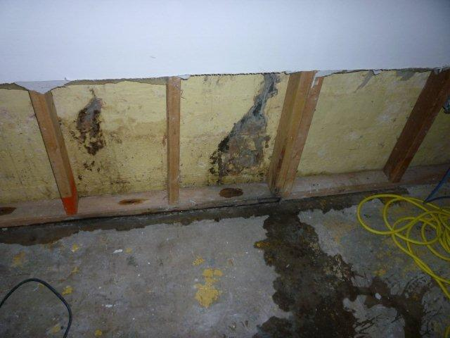 Flood Damaged Basement | MoldPro | Alberta Asbestos and Mold Removal Specialists