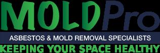 MoldPro Logo