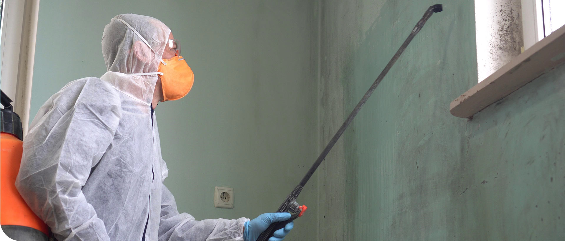 Mold Removal | MoldPro | Alberta Asbestos and Mold Removal Specialists